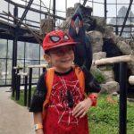 htm wisata kebun binatang lembang park and zoo