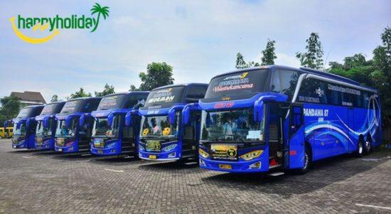 Nomor Telepon Dan Harga Sewa Bus Pandawa 87