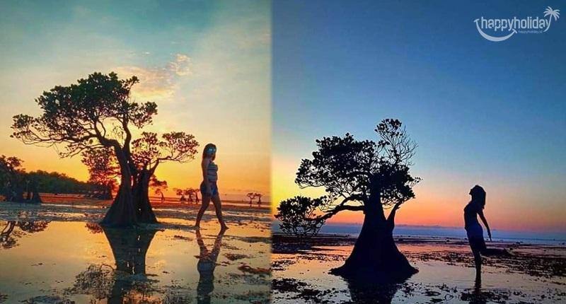 2 Spot Foto Iconik Di Walakiri Beach Sumba Timur