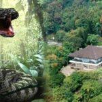 Penjaga Villa Soekarno Di Puncak Bogor